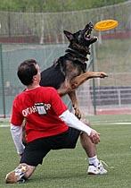 Собака - преданный и близкий друг человека