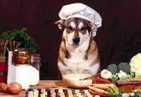 Как правильно кормить щенка