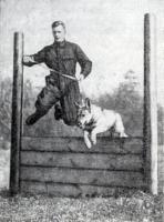 Немного о дрессировке собак