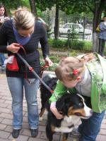 Канистерапия - лечение с помощью собак