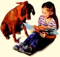 Собаки и их обучение