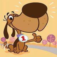 Собаководство ответственное занятие